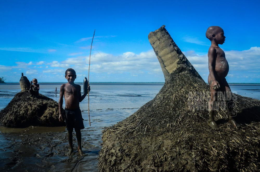 papua-new-guinea-2014-fly-river-doumori-children-tree-sandbank-tsunami