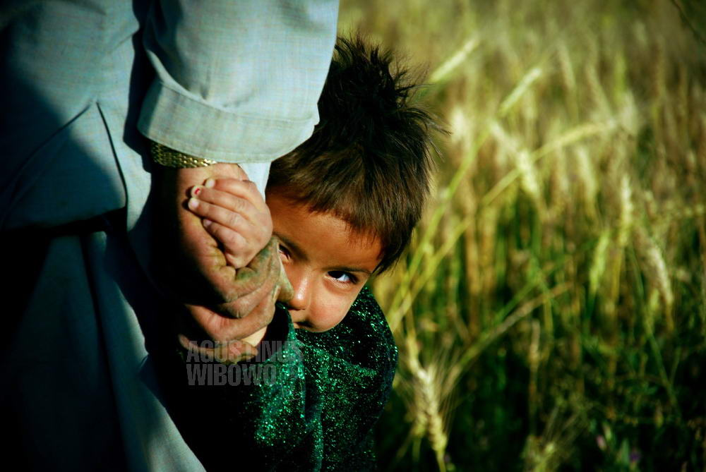 afghanistan-2008-ghour-farmer-girl-field