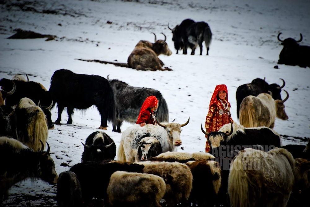 afghanistan-2008-pamir-girls-summer-snow-yaks-field