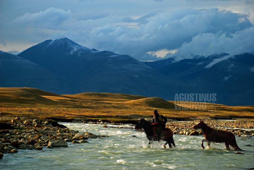 afghanistan-2008-pamir-horse-river-crossing