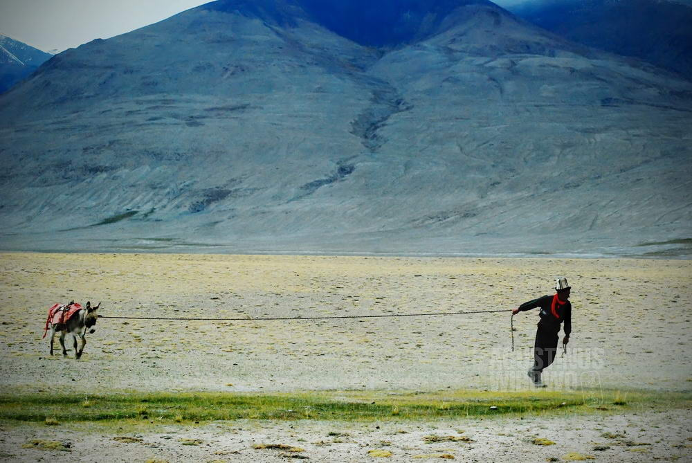 afghanistan-2008-pamir-manara-man-donkey