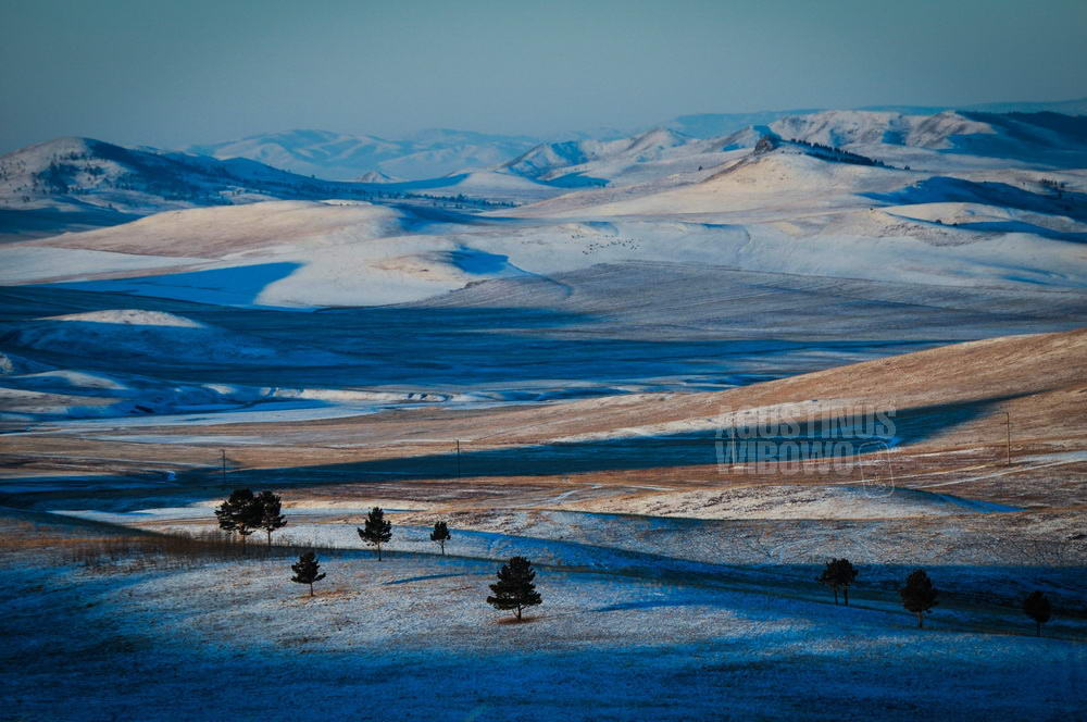 mongolia-2009-darkhan-early-morning-snow-forest-hunting